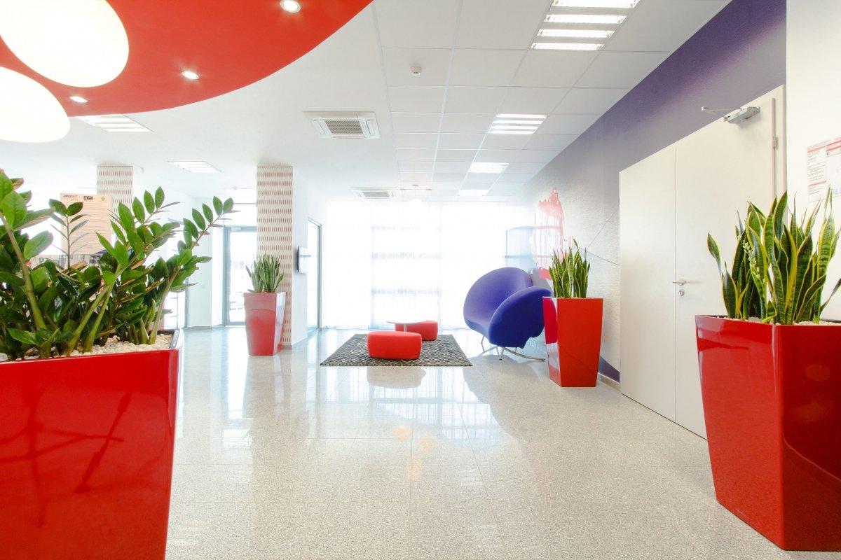 Proiect amenajare sediu firma - Urgent Curier- Receptie si sala de sedinte-14